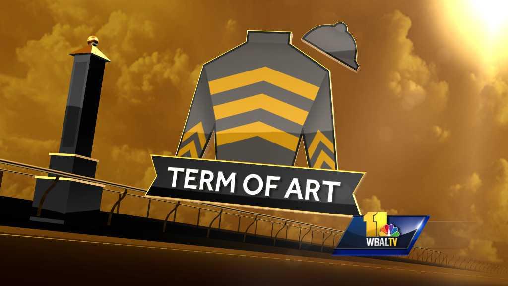 Term of Art silk