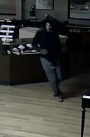 Skatell's robbery