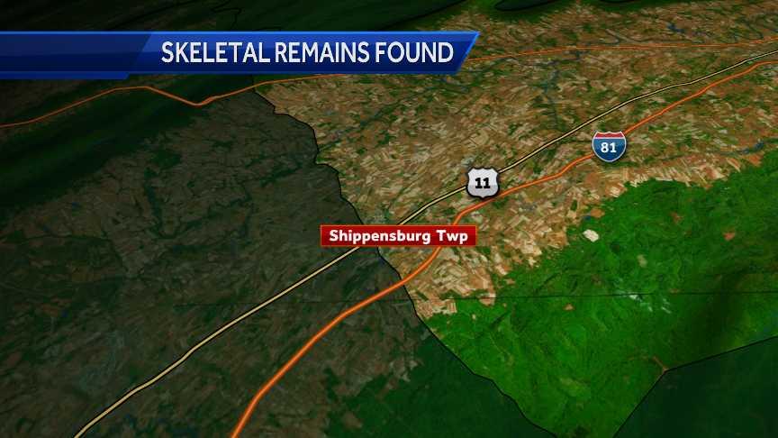Skeletal remains found