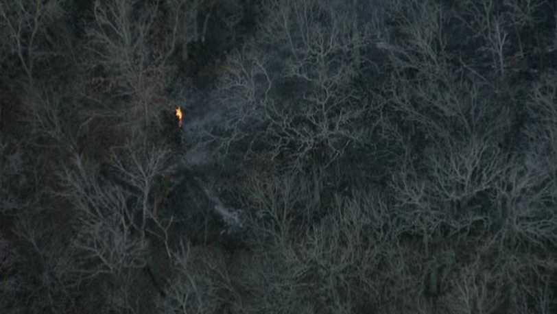 Shawnee Mission Park brush fire