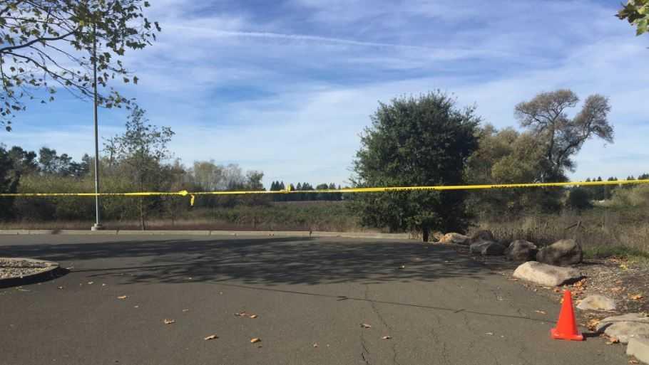 Sonoma State body found