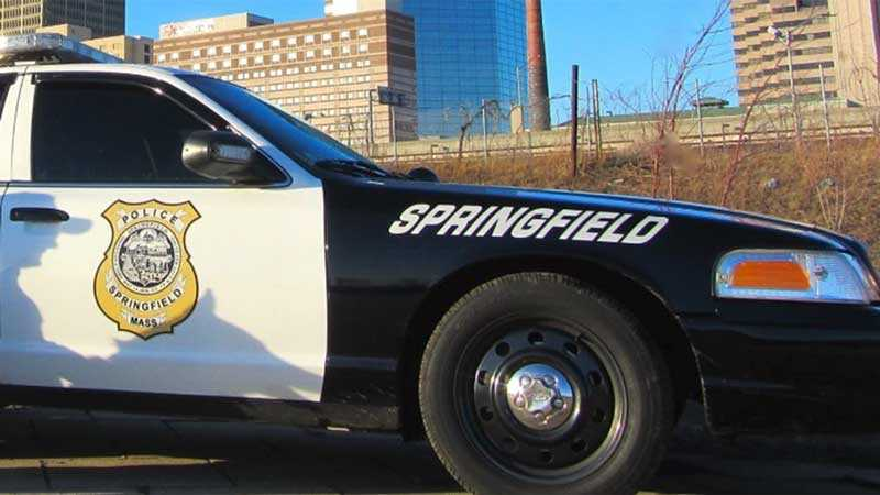 Springfield police car generic