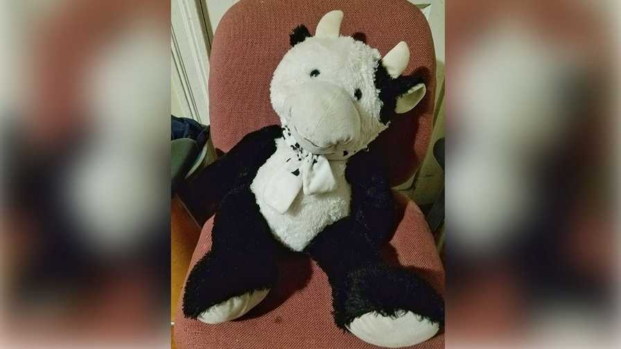 Stuffed cow saves 2 year old who fell out of window for 2 year old falls out of window