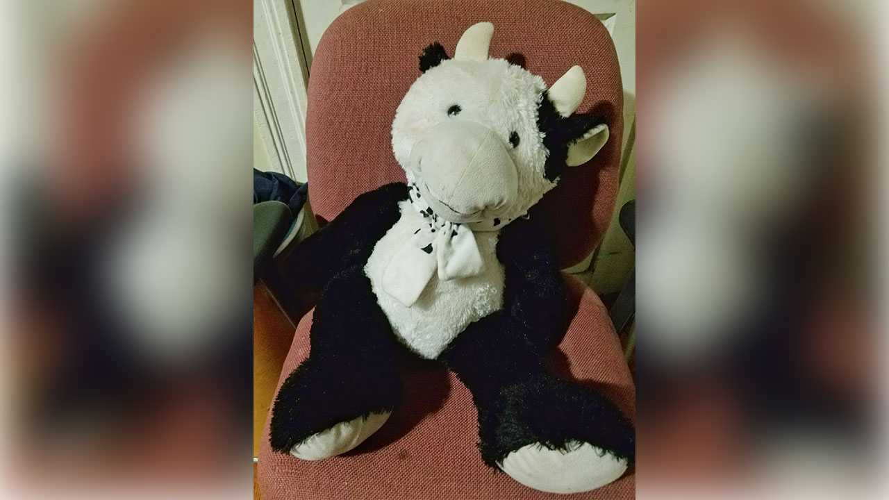 Boy survives second-story fall thanks to stuffed animal