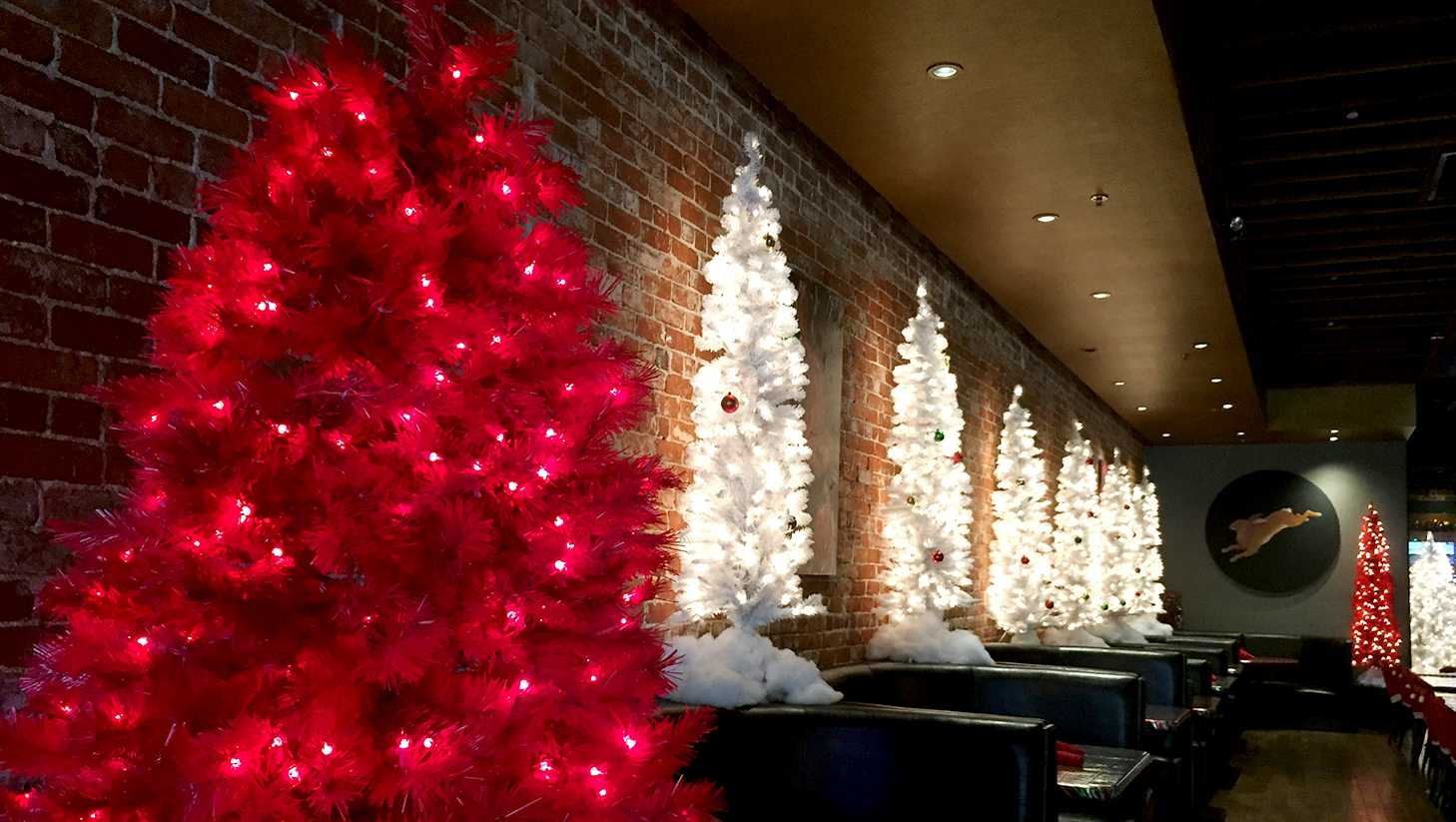 Christmas Tree Sacramento