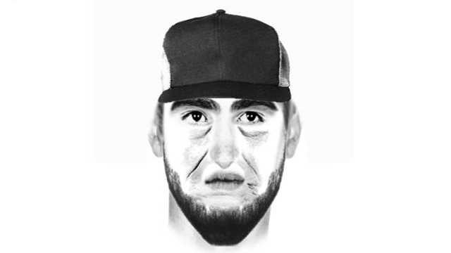 Shady Side sex offense suspect