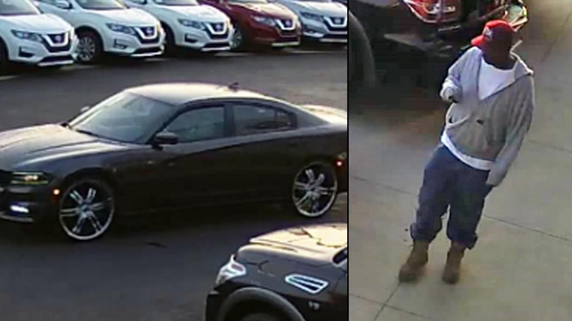 Tuscaloosa theft suspect