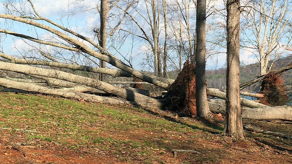 Tornado damage in St. Clair County