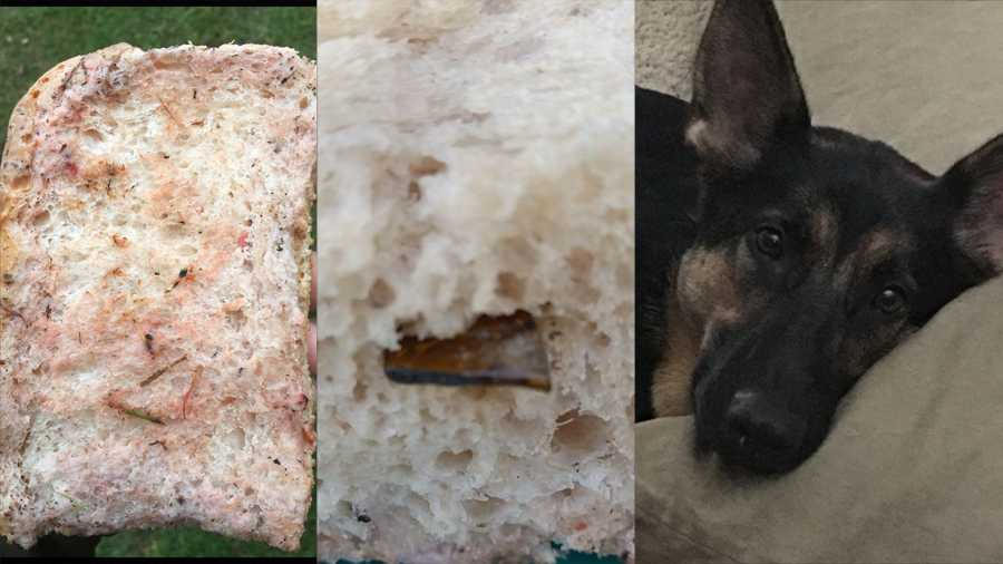 Photos of tainted bread and broken glass that police say someone intended for a man's pet dog to eat in Unity Township.