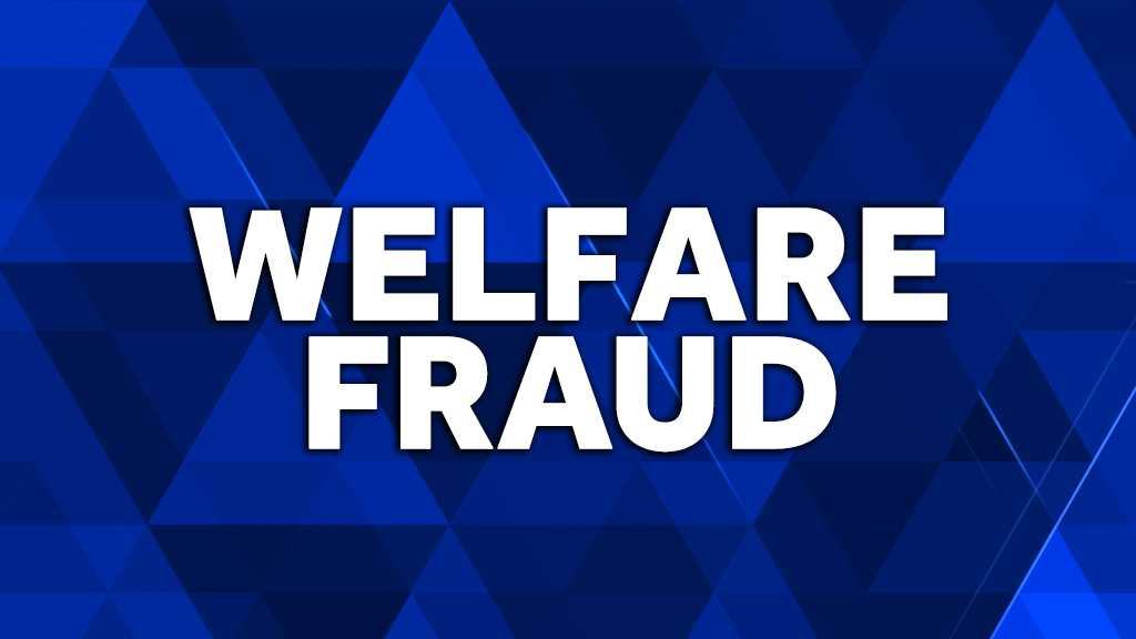 Welfare fraud graphic