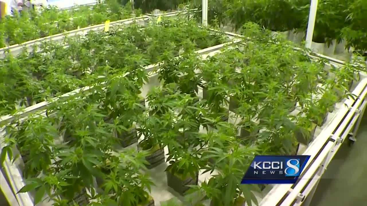 Iowa lawmakers debated a new version of a medical cannabis oil bill Wednesday.