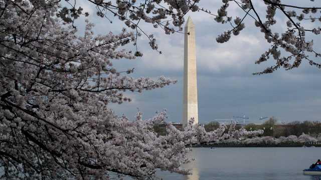 No. 5 -- Washington, D.C.