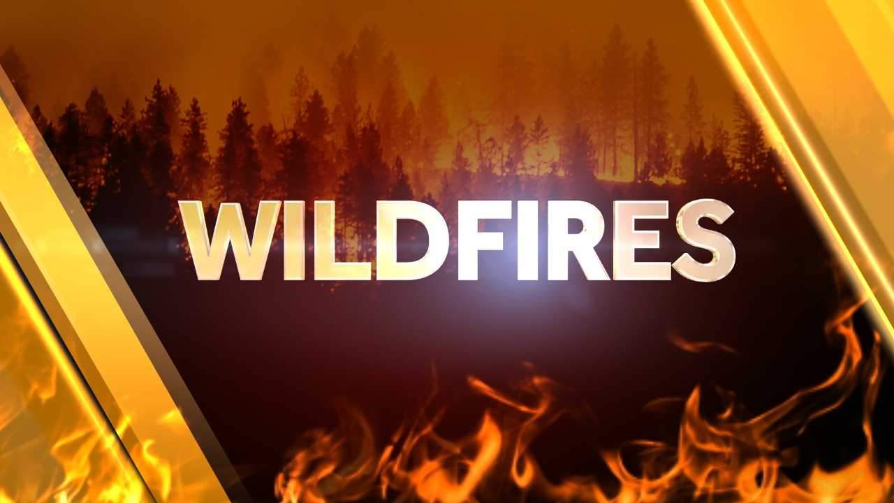 _wildfires_web_0045.jpg