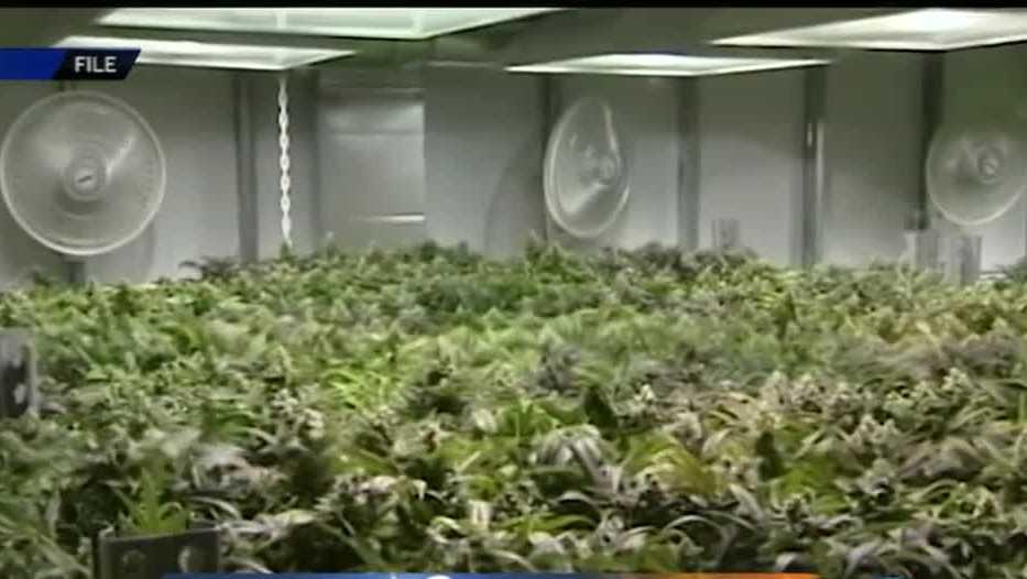 Drive to make medical marijuana legal in Arkansas