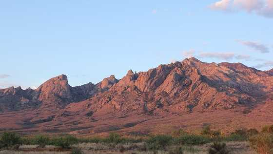 Organ Peak (part of the Organ Mountains) as seen from White Sands Missile Range.