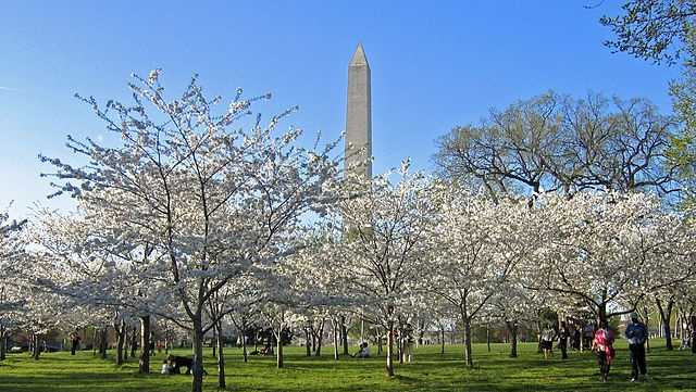 6.  Washington, D.C. -- TieTop income tax rate: 8.95%Sales tax: 6%Property tax per capita: $3,106