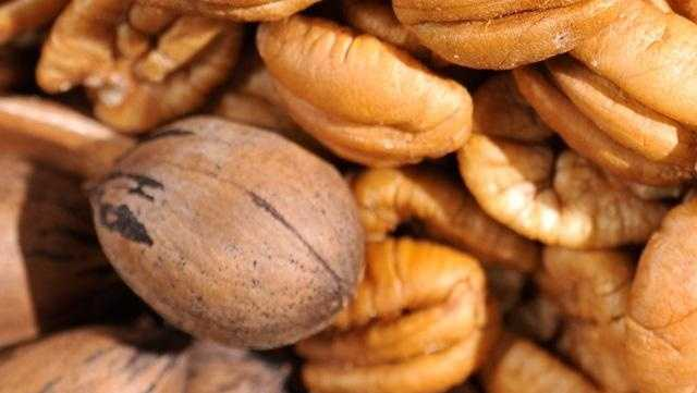There are more than 1,000 varieties of pecans - many are named for Native American Indian tribes such as Cheyenne, Mohawk, Sioux, Choctaw and Shawnee.