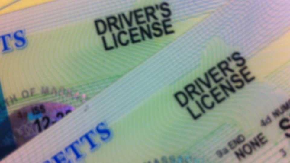 Driver's License ID