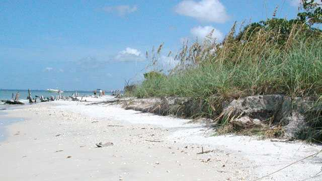 Beach names Florida's Siesta Beach best beach in US