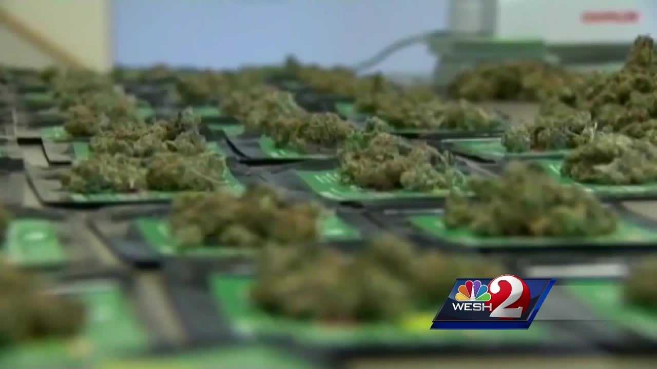 Orlando City Council members are considering decriminalizing the possession of small amounts of marijuana.