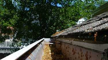 6. Cleaning gutters - 170 calories