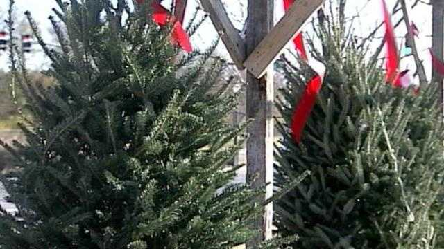 Local ways to get rid of Christmas trees