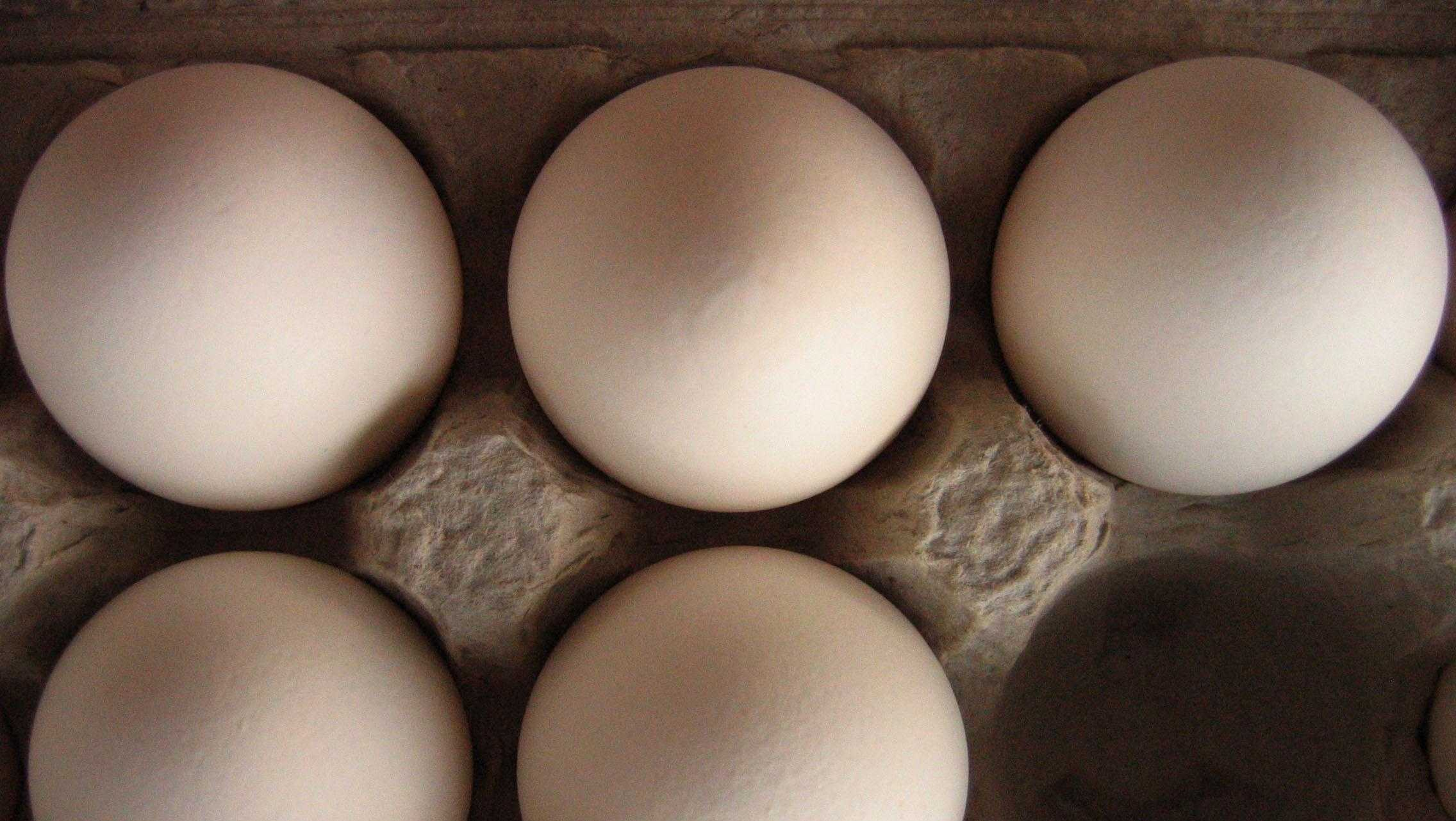 Eggs usually cost a dollar for a half-dozen, and they are a good source of protein.