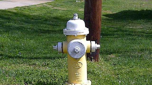 2 fire hydrant citrus.sunshine.jpg