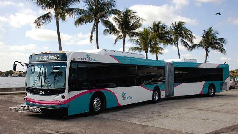 Palm Tran Bus