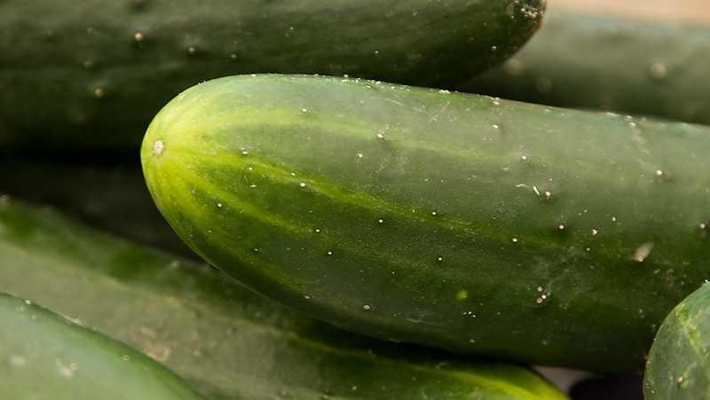 10) Cucumbers