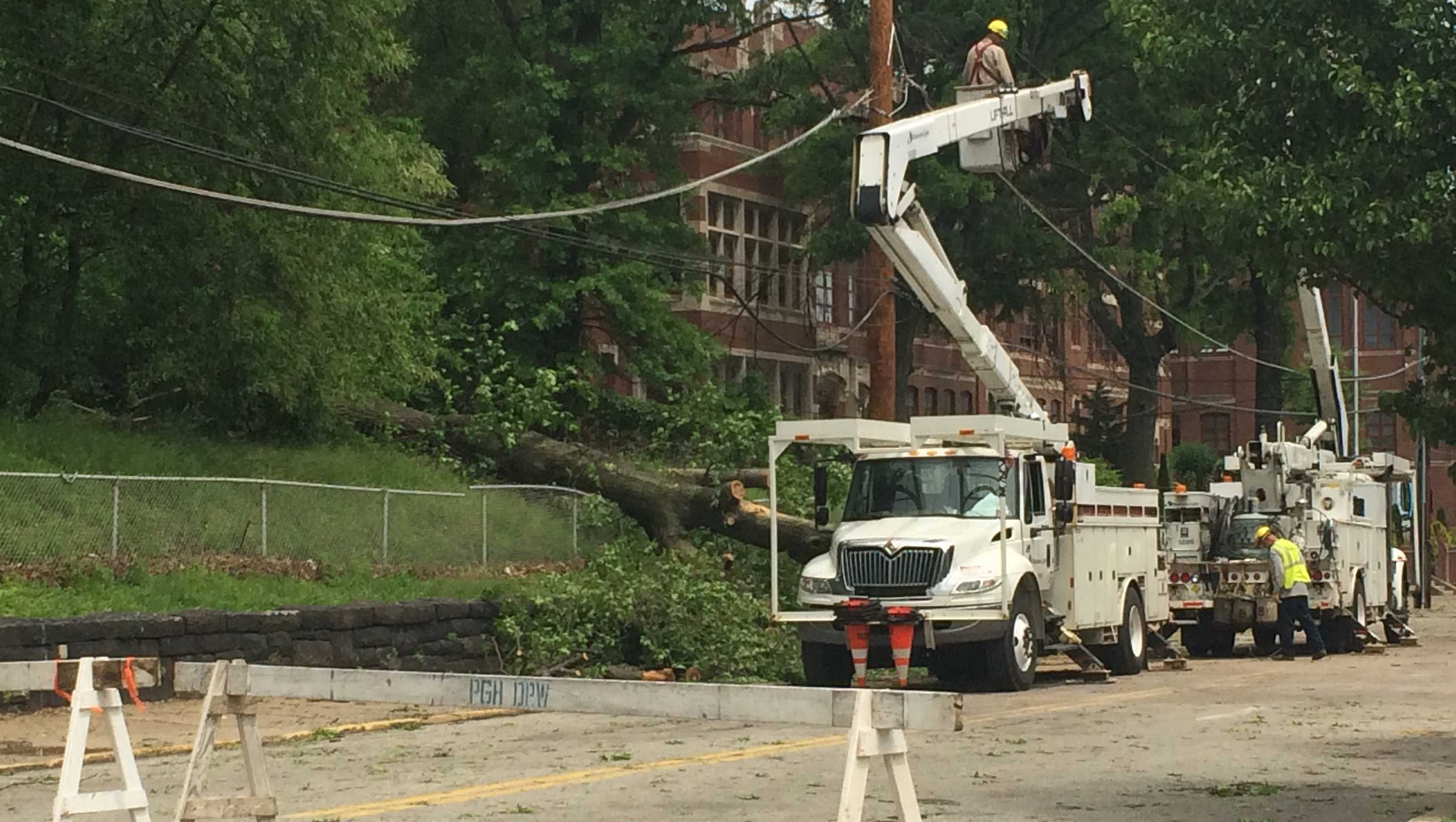 A large tree fell and took out nine sections of wires at Bedford Avenue and Devilliers Street in the Hill District.
