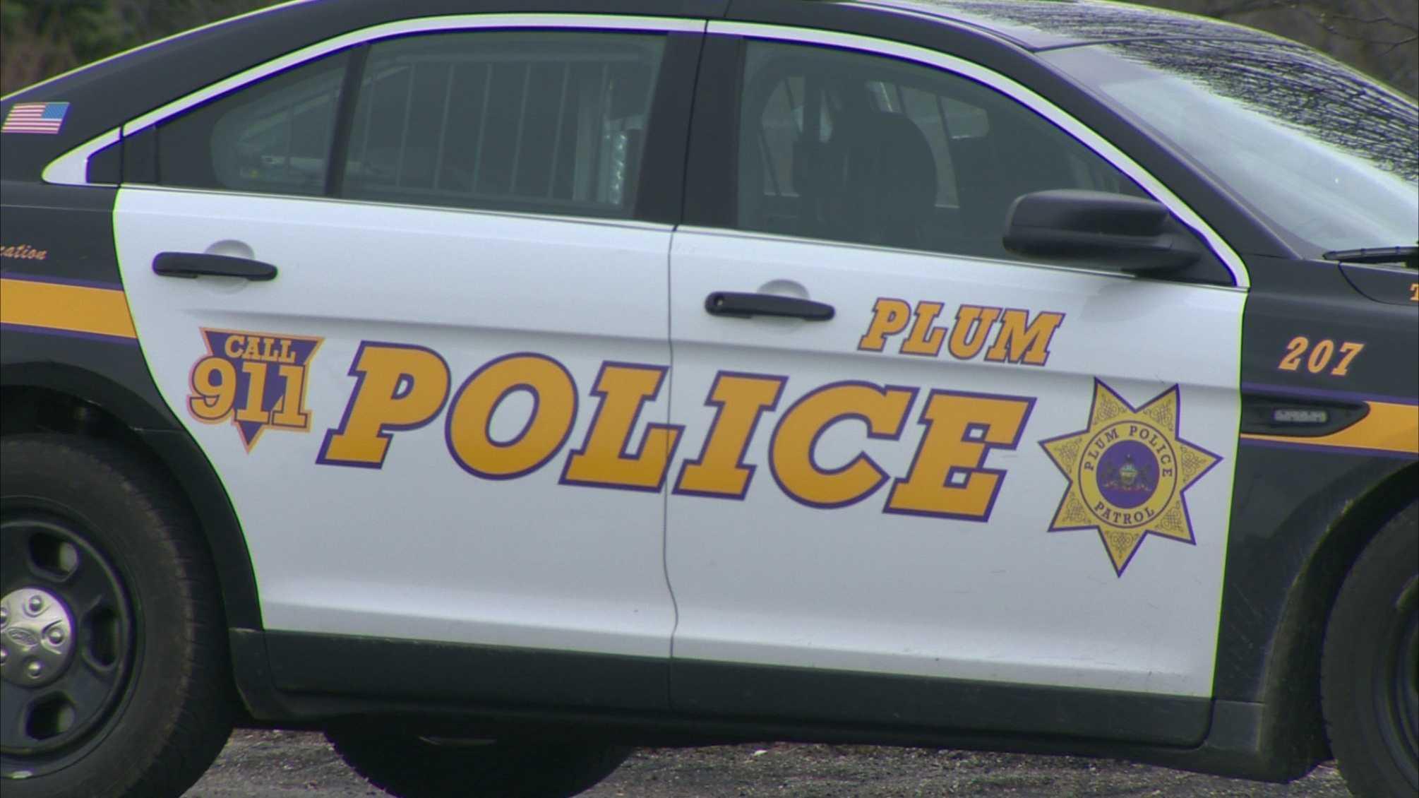 A Plum police car