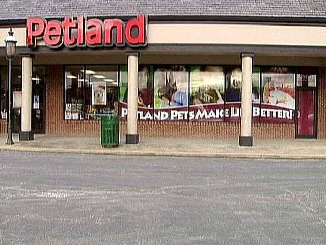 Outbreak linked to Petland puppies