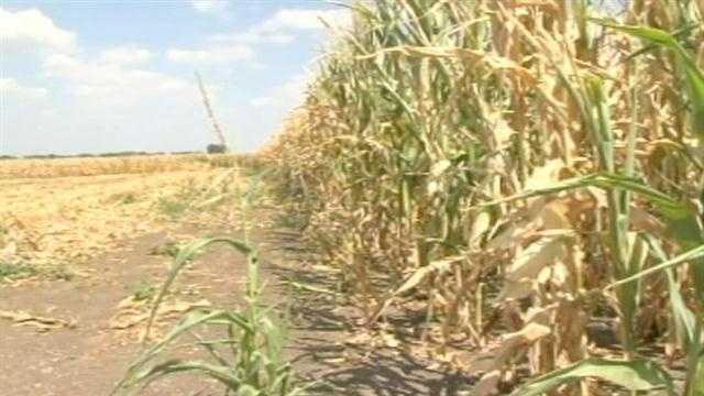 Farmers talk drought