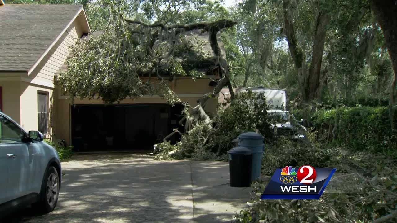 debris removal in your area