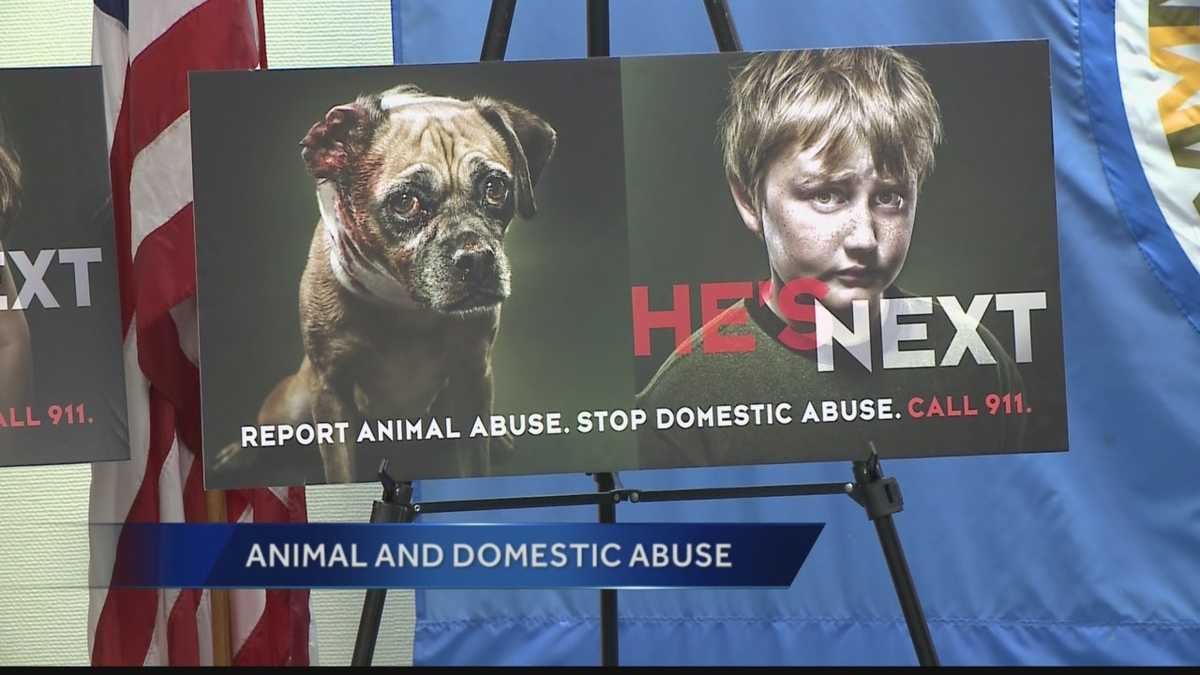 domestic animal abuse Animal cruelty and neglect exposed research suggests a link between animal abuse and domestic efforts to raise awareness of animal abuse and neglect as.