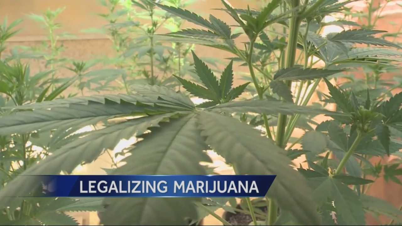 argument for legalization of marijuana Marijuana legalization laws would minimize the flow of money to criminal gangs that would bring billions of dollars for productive economic development if it were a regulated and legal market, marijuana sales and use among teenagers could be reduced.